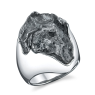 14kt White Gold Meteorite Ring